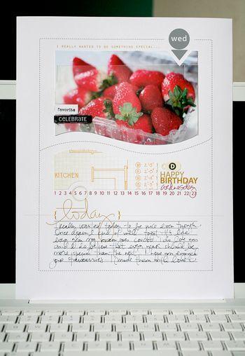 [ Birthday Berries // 2009 ]